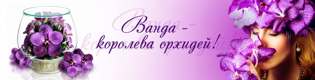 bryoni_vanda_1.jpg